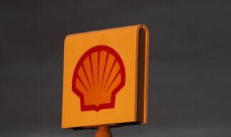 Shell - Ed Dunens