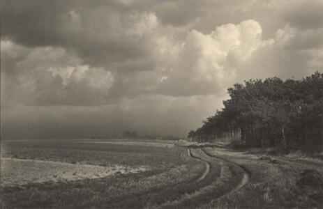 Fieldlab Martien Coppens Bakelse heikant Peelland (1940-1945) Collectie Het Noordbrabants Museum © Martien Coppens - Nederlands Fotomuseum