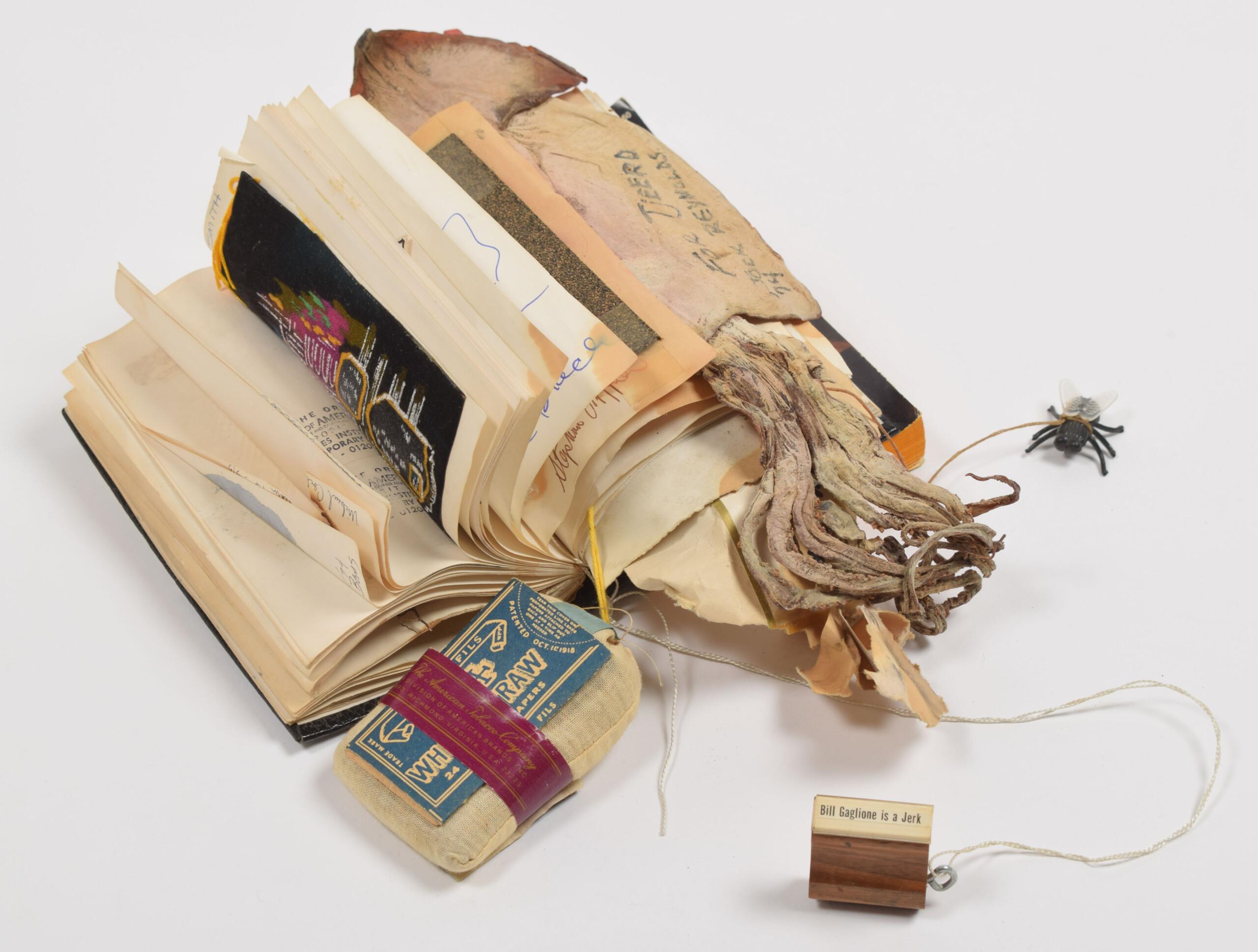 Tjeerd Deelstra's tripbook Parafernalia
